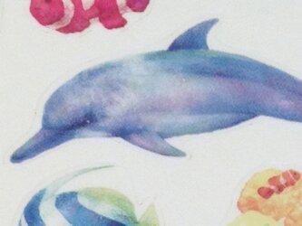透明シール海の生き物2シートセットの画像