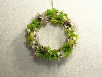 春の原っぱ♡グリーンナチュラルリース♪ No.2の画像
