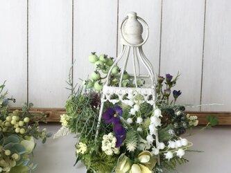 Lantern arrange whiteの画像