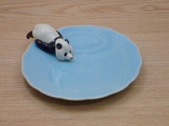 水青爆睡大熊猫輪花小皿−Kの画像