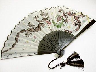 絹扇子(ヤモリの家族)の画像