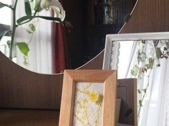 【monokli】季節のミニフレーム 二月の蝋梅の画像