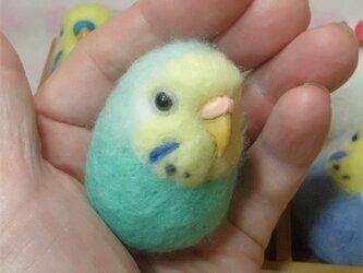 セキセイインコ レインボー・ミントブルー羊毛フェルト 小鳥マカロン(?)選べる2タイプ(マグネットまたはブローチ)【受注製作】の画像