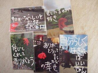 アカイヌ ポストカードまとめ買い 「ありがとう」5枚セットの画像
