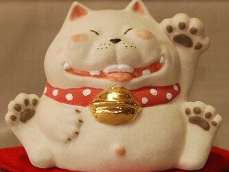 招き猫。人招き 公太くん阿。の画像