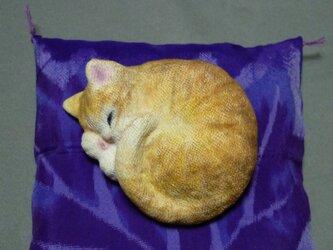 アンモニャイト 茶トラ猫さん 絹の座布団つきの画像