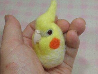 オカメインコ ルチノーパール 羊毛フェルト 小鳥マカロン(?)選べる2タイプ(マグネットまたはブローチ)【受注製作】の画像