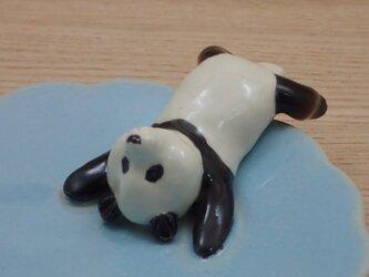 水青爆睡大熊猫輪花小皿−Rの画像