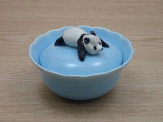 水青爆睡大熊猫輪花飴入−Gの画像