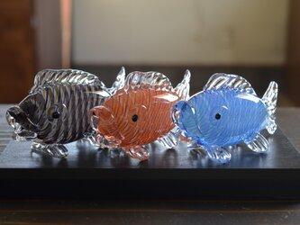 ガラスの鯉のぼりの画像