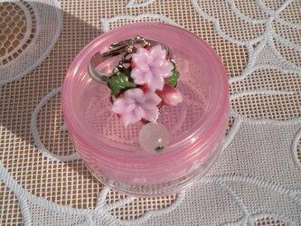 桜のリングⅠの画像