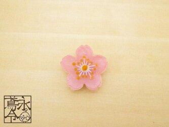 帯留 透明ピンクの桜の花の画像