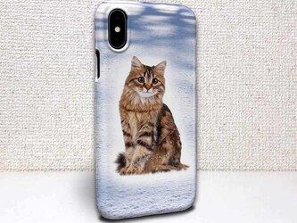 iphone ハードケース iPhoneX iphone8 iphone8 plus iphone7 猫 サイベリアンの画像