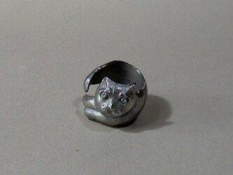 ネコのリングの画像