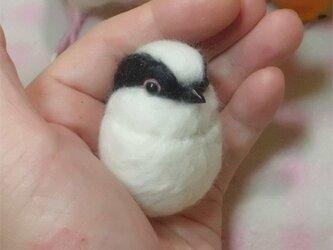 エナガ☆選べる2タイプ☆(Aマグネット・Bクリップ付ブローチピン) ころころ丸顔♪ 羊毛の小鳥 【受注製作】の画像