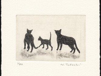 三匹の猫 ・ ファミリー / 銅版画 (作品のみ)の画像