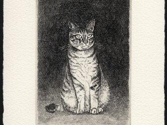 猫 ・2014 / 銅版画 (作品のみ)の画像