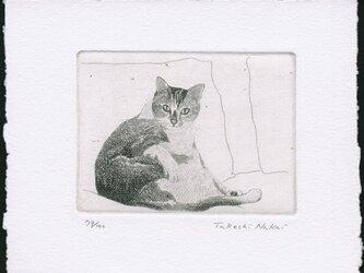 ソファーに座る猫 / 銅版画 (作品のみ)の画像