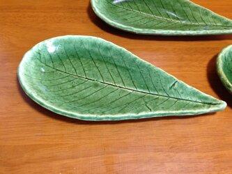 朴葉新緑皿の画像
