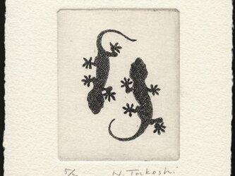 ヤモリ・2012A / 銅版画 (額なし)の画像
