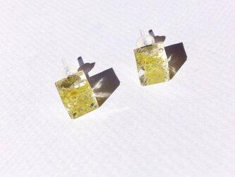 Watering moss チタンポストピアス cubeの画像