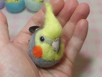☆選べる2タイプ☆ コロコロ♪丸顔 羊毛の小鳥 オカメインコ・ノーマルグレー の画像
