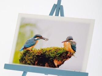 手作りイーゼルとPhoto Post Card(野鳥)5枚セットの画像
