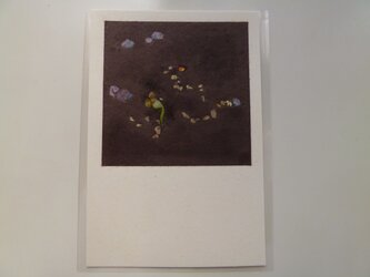 発芽(ポストカード)の画像