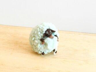 羊の衣替えの画像