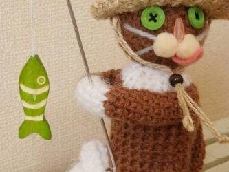 釣り猫(白茶)の画像