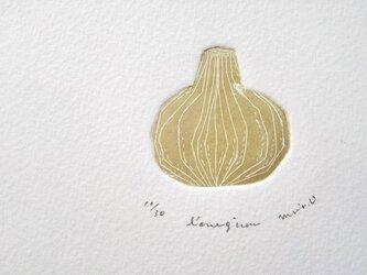 銅版画・玉葱の画像