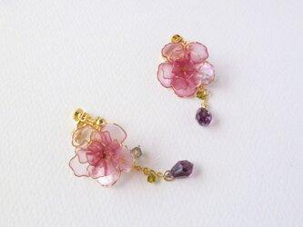 八重桜イヤリングの画像
