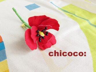 *miniminiポピー red*の画像