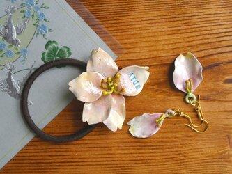 ATOSシリーズ 春香る桜のヘアゴムの画像