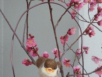羊毛フェルト スズメのヒナうたうの画像