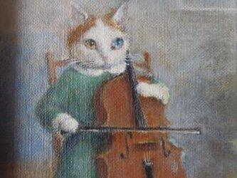 チェロ・ターキッシュバンの画像