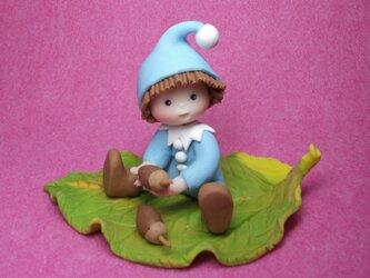 森の小人ーどんぐりーの画像