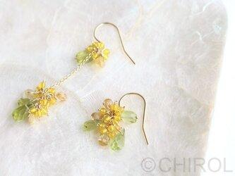 アシンメトリーの黄色い花とペリドットのピアス/14kgfの画像