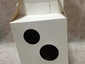 フラワーアレンジ用宅配BOX Mの画像