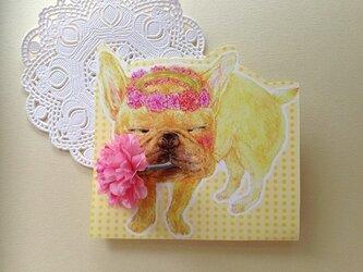 花冠とフレンチブルドックの画像