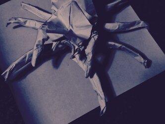 折り紙で蜘蛛を折りましたの画像