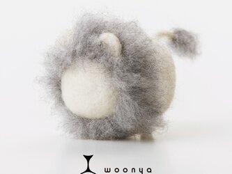 woonya【lion・shiro】の画像