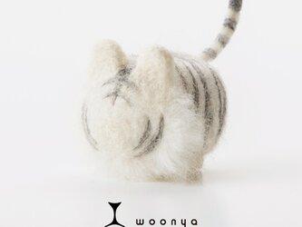 woonya【tiger・shiro】の画像