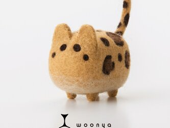 woonya【leopard】の画像