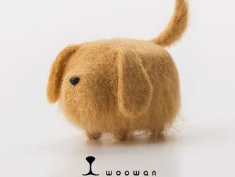 woowan【golden retriever】の画像