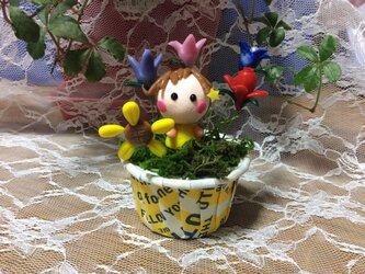 お花の妖精5の画像