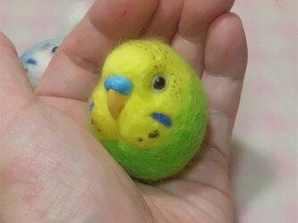 ☆選べる2タイプ☆ コロコロ♪丸顔 羊毛の小鳥  セキセイインコ オパーリン・黄緑の画像