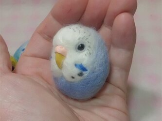 ☆選べる2タイプ☆ コロコロ♪丸顔 羊毛の小鳥  セキセイインコ オパーリン・青色の画像