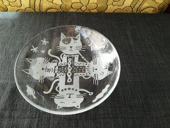 ガラスの浅鉢     4匹の猫の画像