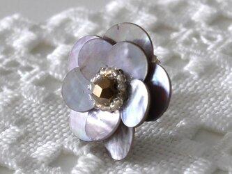 黒蝶貝のリングの画像
